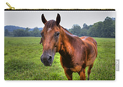 Horse In A Field Carry-all Pouch