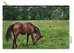 Horse In Holland Michigan Carry-all Pouch