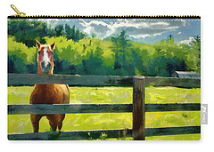 Horse In The Field Carry-all Pouch by Jeff Kolker