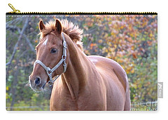 Carry-all Pouch featuring the photograph Horse Muscle by Glenn Gordon