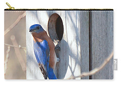 Carry-all Pouch featuring the photograph House Hunting by Kerri Farley