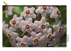 Hoya Waxflower Carry-all Pouch