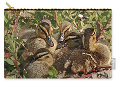 Carry-all Pouch featuring the photograph Huddled Ducklings by Kate Brown
