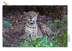 Hugo Waking 2 Carry-all Pouch by David Beebe