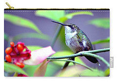 Carry-all Pouch featuring the photograph Hummingbird by Deena Stoddard