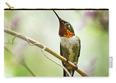 Hummingbird Looking For Love Square Carry-all Pouch