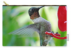 Hummingbird Male Ruby Throated  Carry-all Pouch by Lizi Beard-Ward
