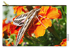 Hummingbird Moth On A Marigold Flower Carry-all Pouch by Nadja Rider