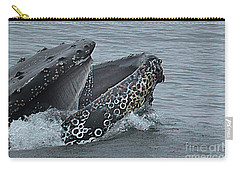 Carry-all Pouch featuring the photograph Humpback Whale  Lunge Feeding 2013 In Monterey Bay by California Views Mr Pat Hathaway Archives