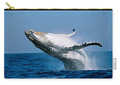 Humpback Whale Megaptera Novaeangliae Carry-all Pouch by Panoramic Images