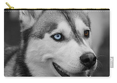 Carry-all Pouch featuring the photograph Husky Portrait by Vicki Spindler