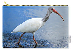 Ibis Visitor Carry-all Pouch by Carol Groenen