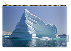 Iceberg Carry-all Pouch by Liz Leyden