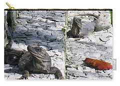 Carry-all Pouch featuring the photograph Iguana Bask In The Sun With You by Patti Whitten