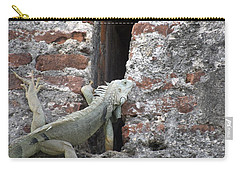 Carry-all Pouch featuring the photograph Iguana by David S Reynolds