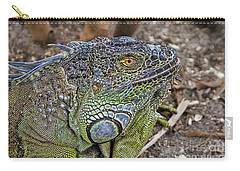 Carry-all Pouch featuring the photograph Iguana by Olga Hamilton