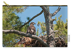 Immature Bald Eagle Carry-all Pouch