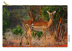 Impala And Young Carry-all Pouch