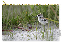 In The Grass - Wilson's Plover Chick Carry-all Pouch