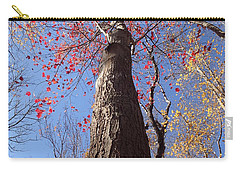 In The Woods 1 Carry-all Pouch