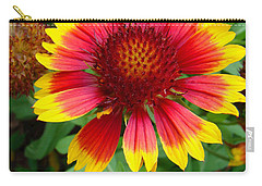 Indian Blanket Flower Carry-all Pouch