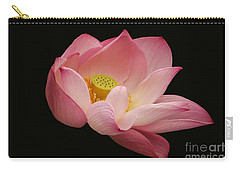 Indian Lotus On Black --- Sacred Light Carry-all Pouch by Byron Varvarigos