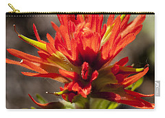 Carry-all Pouch featuring the photograph Indian Paintbrush by Belinda Greb