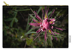 Indian Paintbrush  Carry-all Pouch by Dee Dee  Whittle