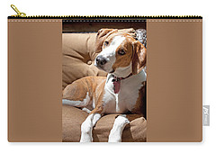 Carry-all Pouch featuring the photograph Inquisitive by Jean Haynes