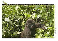 Carry-all Pouch featuring the photograph Into The Light by Liz Leyden