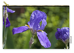 Iris 4 Carry-all Pouch