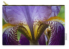 Iris Abstract Carry-all Pouch by Glenn DiPaola