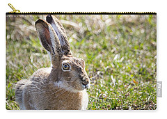Carry-all Pouch featuring the photograph Jackrabbit by Michael Chatt