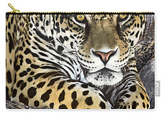 Jaguar Portrait Wildlife Rescue Carry-all Pouch by Dave Welling
