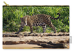 Jaguar River Walk Carry-all Pouch by David Beebe