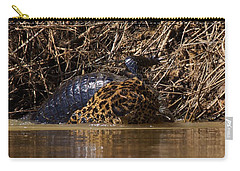 Jaguar Vs Caiman 3 Carry-all Pouch by David Beebe