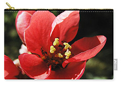Carry-all Pouch featuring the photograph Japanese Apple Flower by Vesna Martinjak