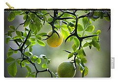 Japanese Orange Tree Carry-all Pouch