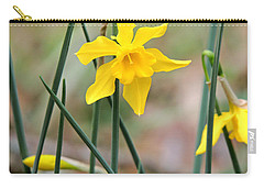 Carry-all Pouch featuring the photograph Johnny-jump-up by Kim Pate