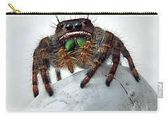 Jumper Spider 2 Carry-all Pouch