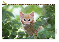 Jungle Kitty Carry-all Pouch