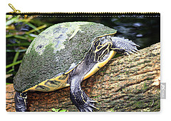 Carry-all Pouch featuring the photograph Just Chilling by Debra Forand