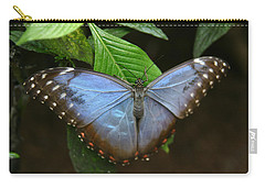 Just Hanging On Carry-all Pouch by Denyse Duhaime