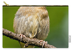 Juvenile American Goldfinch Carry-all Pouch