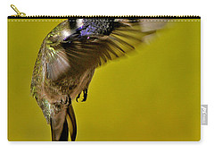Carry-all Pouch featuring the photograph Juvenile Male Allen Hummingbird In Flight Ready To Land by Jay Milo