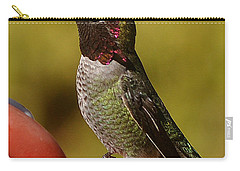 Carry-all Pouch featuring the photograph Juvenile Male Anna by Jay Milo