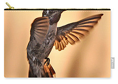 Juvenile Male Anna's In Flight Carry-all Pouch by Jay Milo