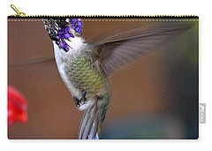 Carry-all Pouch featuring the photograph Juvenile Male Costa by Jay Milo