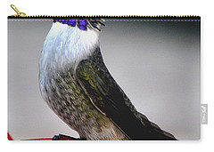 Carry-all Pouch featuring the photograph Juvenile Male Costa On Perch Posing by Jay Milo