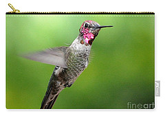 Carry-all Pouch featuring the photograph Juvenile Male Anna's In Flight by Jay Milo